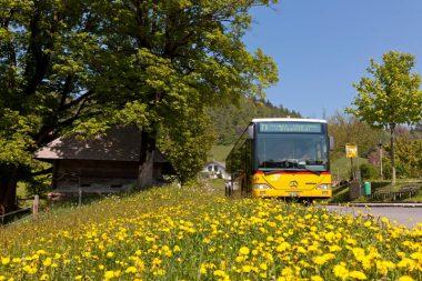 60.071 Luzern-Eigenthal_083_web