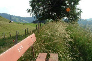 Rundweg grosse Welt Schwarzenberg