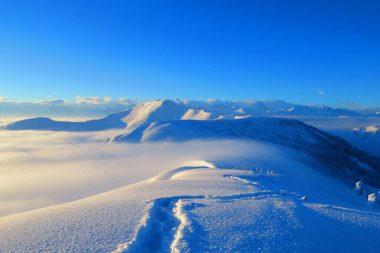 Schneeschuhtrail Jänzi